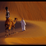 Google Maps uses camels to add the Liwa Oasis and desert to street view