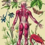 Juan Gatti - Ciencias Naturales