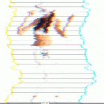 TIALS AW14 : CRAZYSEXYCOOL