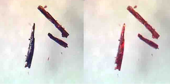 The black crystals are oxygen-soaked, the right are not. Image: McKenzie et al