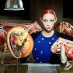 Lucia Giacani's models and animal anatomy