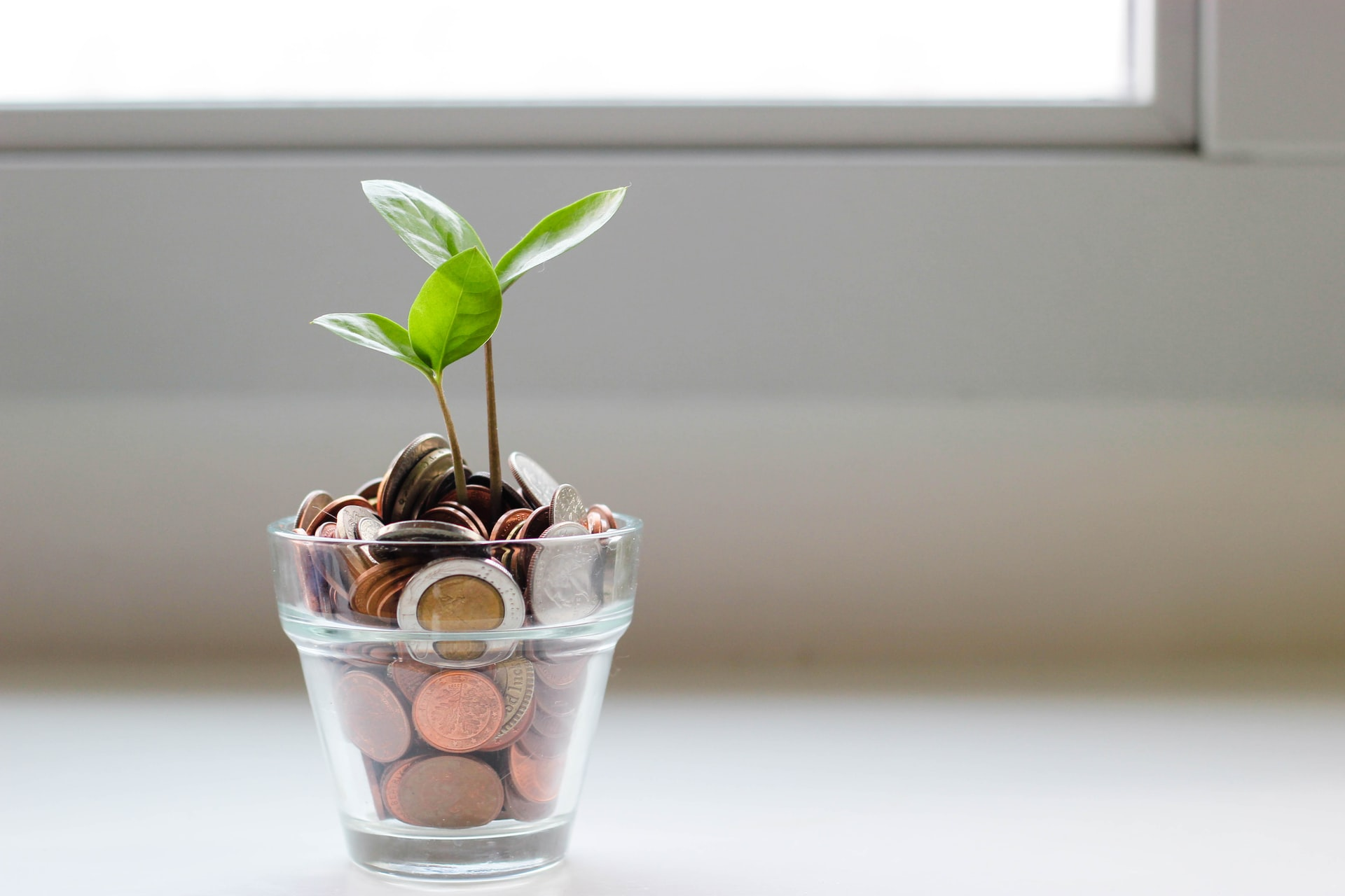 4 Money-Saving Tips You Need to Know